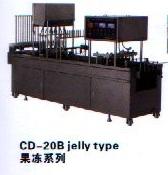 2.1.1.c.cd_20b